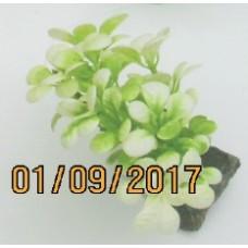 Аквариумное растение пластм. 10 см., в упаковке